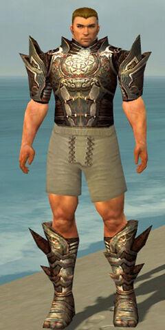 File:Warrior Monument Armor M gray chest feet front.jpg