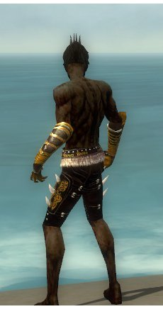 File:Necromancer Norn Armor M gray arms legs back.jpg