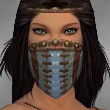 File:Ranger Luxon Armor F gray head front.jpg