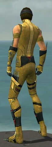 File:Assassin Canthan Armor M dyed back.jpg
