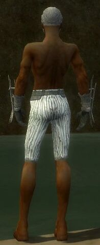 File:Elementalist Primeval Armor M gray arms legs back.jpg