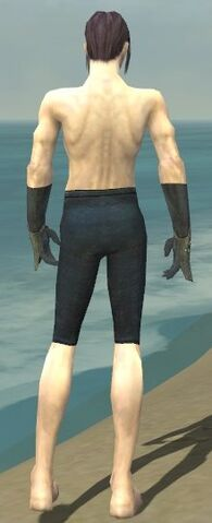 File:Elementalist Tyrian Armor M gray arms legs back.jpg
