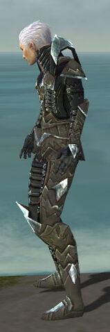 File:Necromancer Profane Armor M gray side.jpg