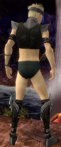 File:Assassin Luxon Armor M gray chest feet back.jpg