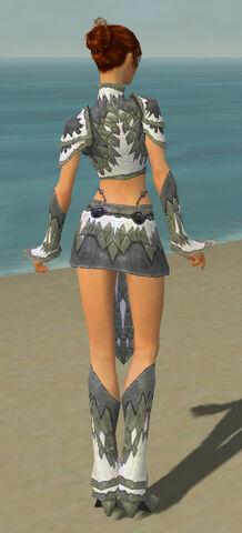 File:Elementalist Iceforged Armor F gray back.jpg