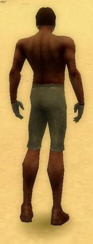 File:Mesmer Norn Armor M gray arms legs back.jpg