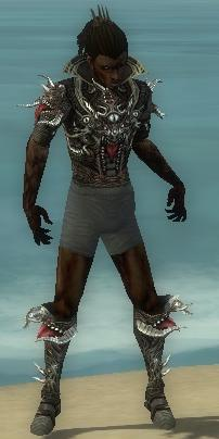 File:Necromancer Elite Canthan Armor M gray chest feet front.jpg