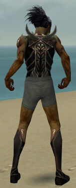 Necromancer Istani Armor M gray chest feet back