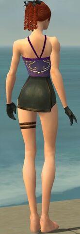 File:Mesmer Vabbian Armor F gray arms legs back.jpg
