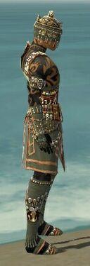 Ritualist Elite Imperial Armor M gray side alternate