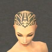 File:Monk Elite Kurzick Armor F gray head front.jpg