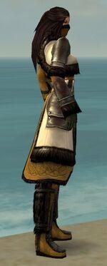 Ranger Norn Armor F dyed side alternate