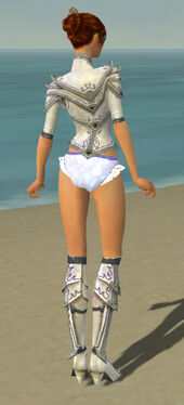 Elementalist Tyrian Armor F gray chest feet back