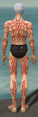 Necromancer Scar Pattern Armor M dyed back