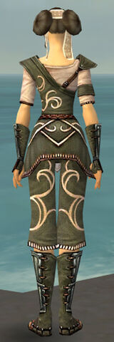 File:Monk Shing Jea Armor F gray back.jpg