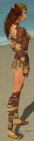 File:Ranger Studded Leather Armor F dyed side.jpg