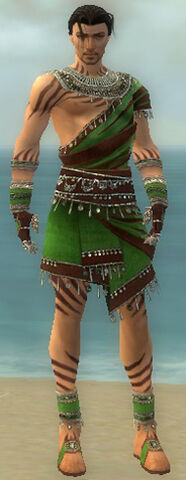 File:Ritualist Exotic Armor M dyed front.jpg