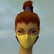 File:Assassin Kurzick Armor F dyed head front.jpg
