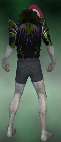 File:Gloomcrest Tunic M dyed back.jpg