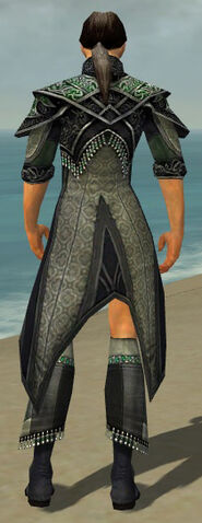 File:Elementalist Elite Luxon Armor M gray chest feet back.jpg