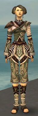 Monk Canthan Armor F gray front
