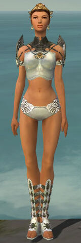 File:Paragon Sunspear Armor F gray chest feet front.jpg