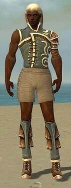 Ranger Shing Jea Armor M gray chest feet front