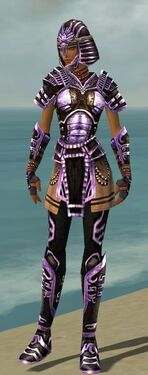 Warrior Ancient Armor F dyed front
