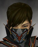 File:Assassin Elite Kurzick Armor M gray head front.jpg