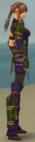 File:Ranger Druid Armor F dyed side alternate.jpg