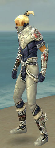 File:Assassin Norn Armor M dyed side.jpg