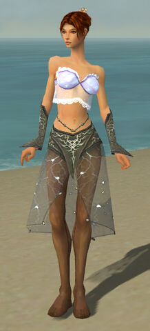 File:Elementalist Elite Stormforged Armor F gray arms legs front.jpg