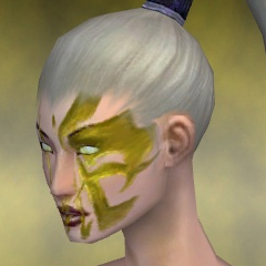 File:Necromancer Elite Canthan Armor F dyed head side.jpg