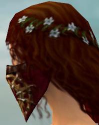 File:Ranger Elite Sunspear Armor F dyed head side.jpg