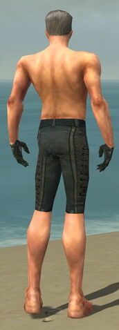 File:Mesmer Elite Rogue Armor M gray arms legs back.jpg