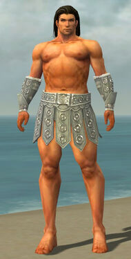 Warrior Ascalon Armor M gray arms legs front