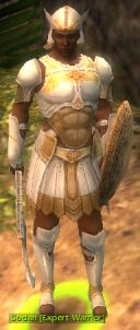 Sodan Expert Warrior