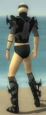 Assassin Kurzick Armor M gray chest feet back