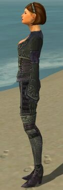 Mesmer Elite Rogue Armor F gray side
