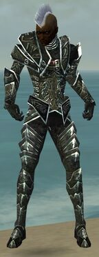 Necromancer Fanatic Armor M gray front