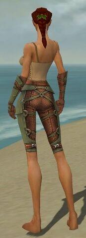 File:Ranger Ascalon Armor F gray arms legs back.jpg