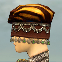File:Ritualist Exotic Armor F dyed head side.jpg