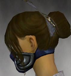 File:Assassin Norn Armor F gray head side.jpg
