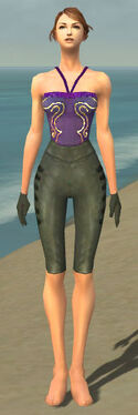 Mesmer Rogue Armor F gray arms legs front