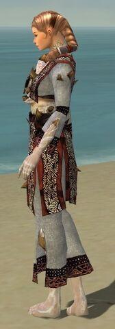 File:Monk Primeval Armor F dyed side.jpg