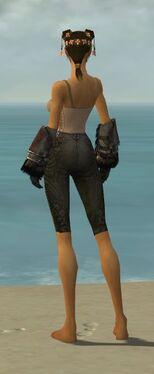 Ranger Norn Armor F gray arms legs back