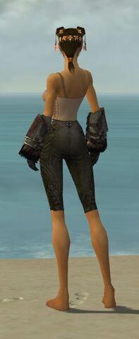 File:Ranger Norn Armor F gray arms legs back.jpg