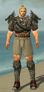 Warrior Elite Canthan Armor M gray chest feet front