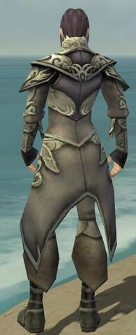 File:Elementalist Monument Armor M gray back.jpg