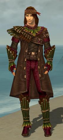 File:Ranger Druid Armor M dyed front.jpg